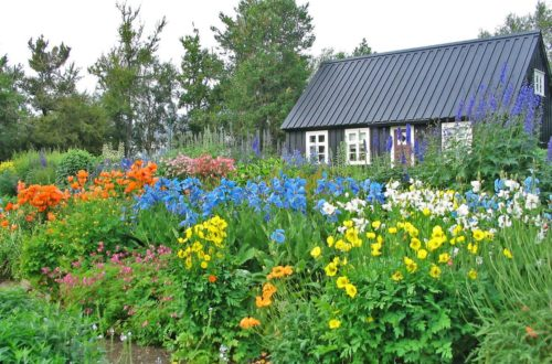 Akureyri Public Park