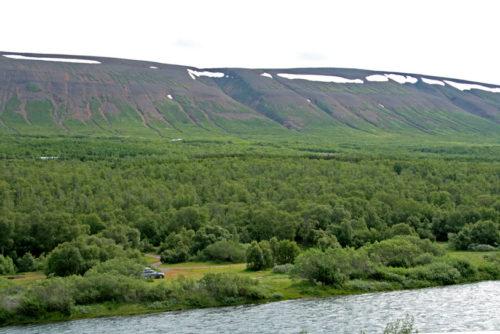 Skógræktin – þjóðskógarnir
