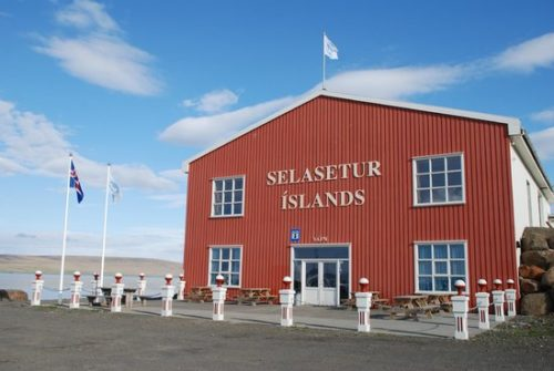 The Icelandic Seal Centre